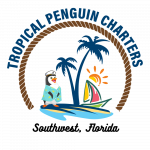 Set sail into paradise with Tropical Penguin Charters