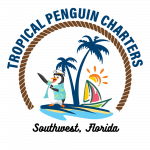 Tropical Penguin Yacht Charters